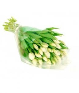 29 White Tulips Bouquet