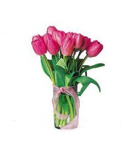 9 Pink Tulips Bouquet