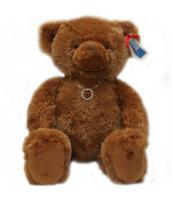 Teddy Bear with Elegant Silver Circle Pendant